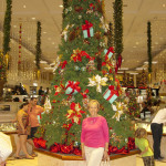 Nassau dutie free store